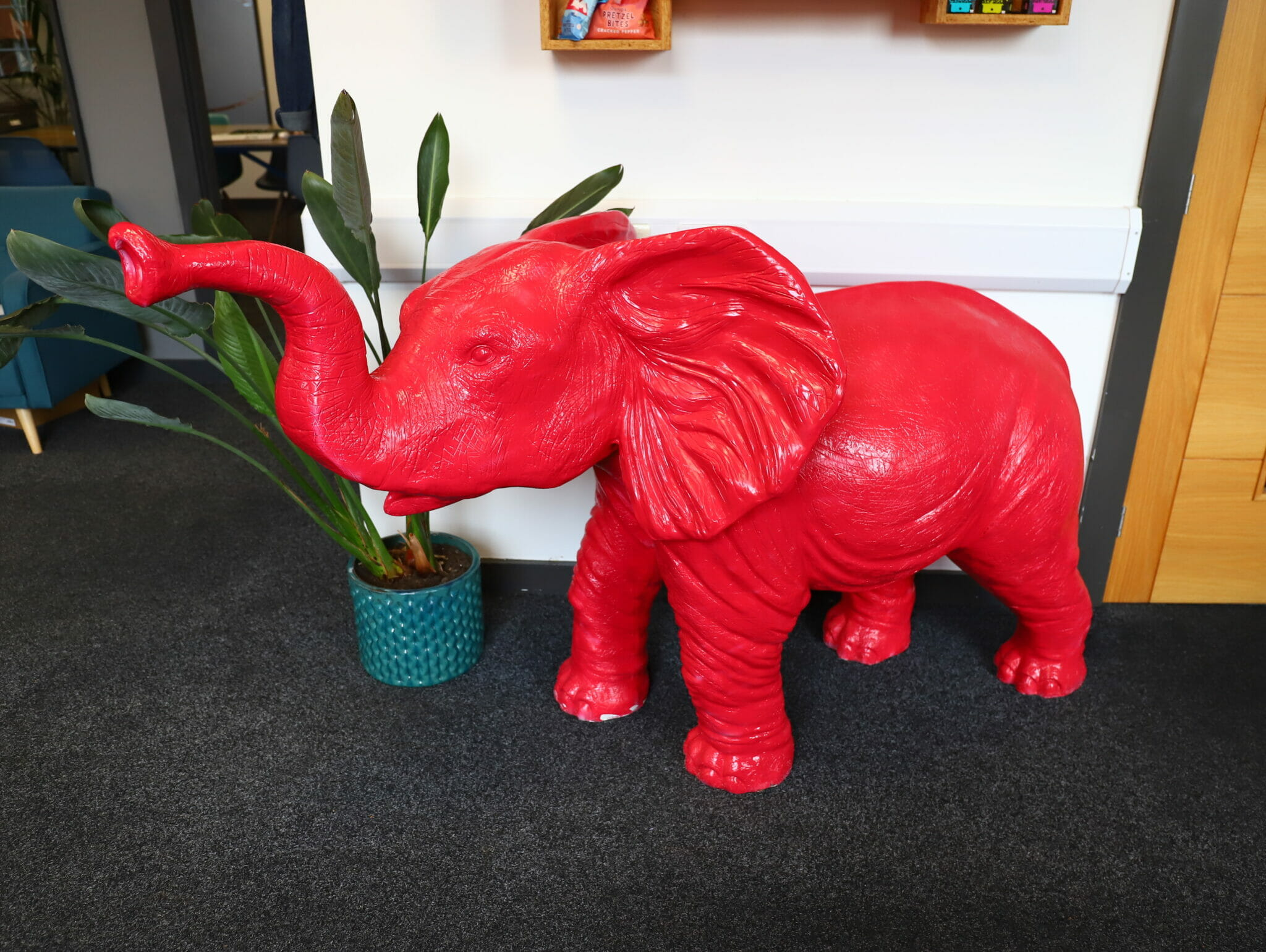 What's with the big red elephant?